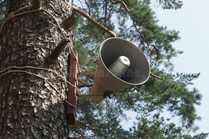 megaphone imagem de stock