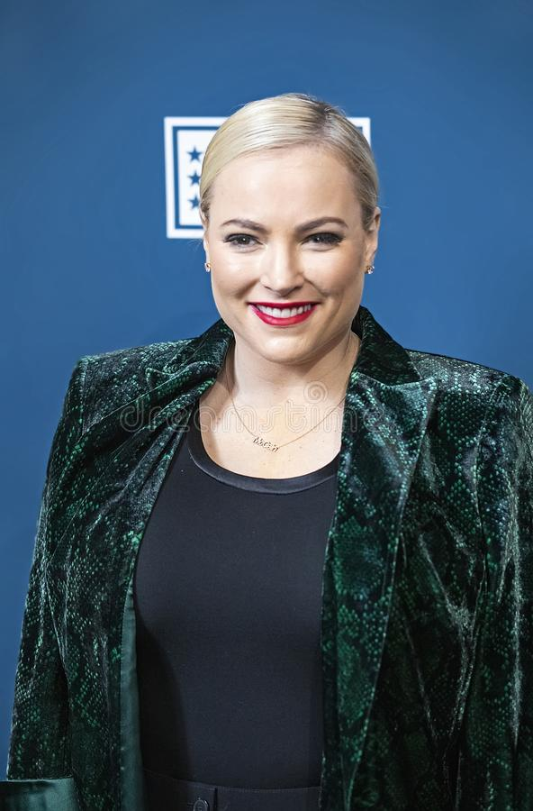 Meghan McCain at the Variety 3rd Annual Salute Event. stock image