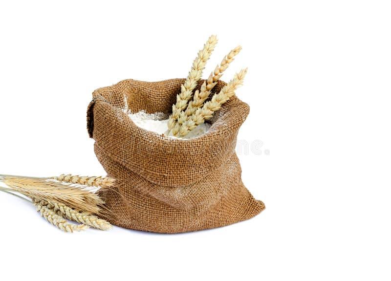 Mehl in einem Sack lizenzfreie stockfotografie