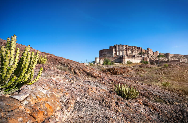 Mehrangarh堡垒在印度的沙漠 库存图片