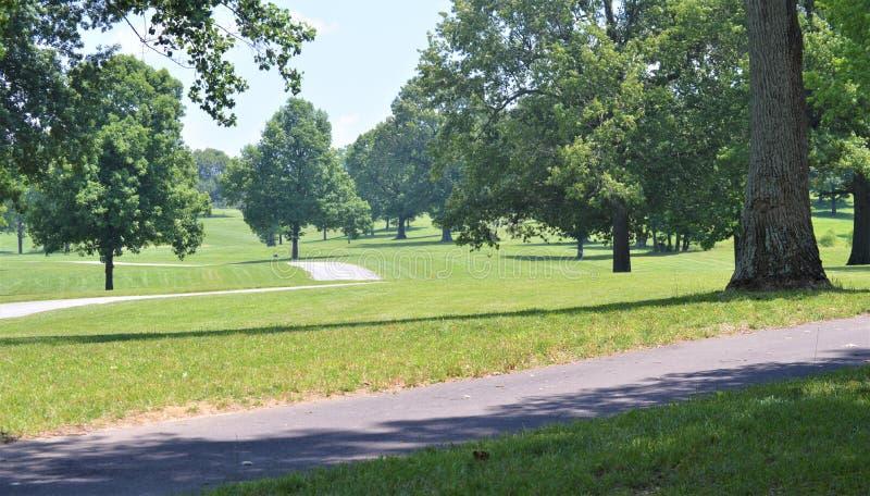 Mehrfache gepflasterte Wege, die durch ein grünes Feld mit mehrfachen hohen Bäumen überschreiten lizenzfreies stockbild