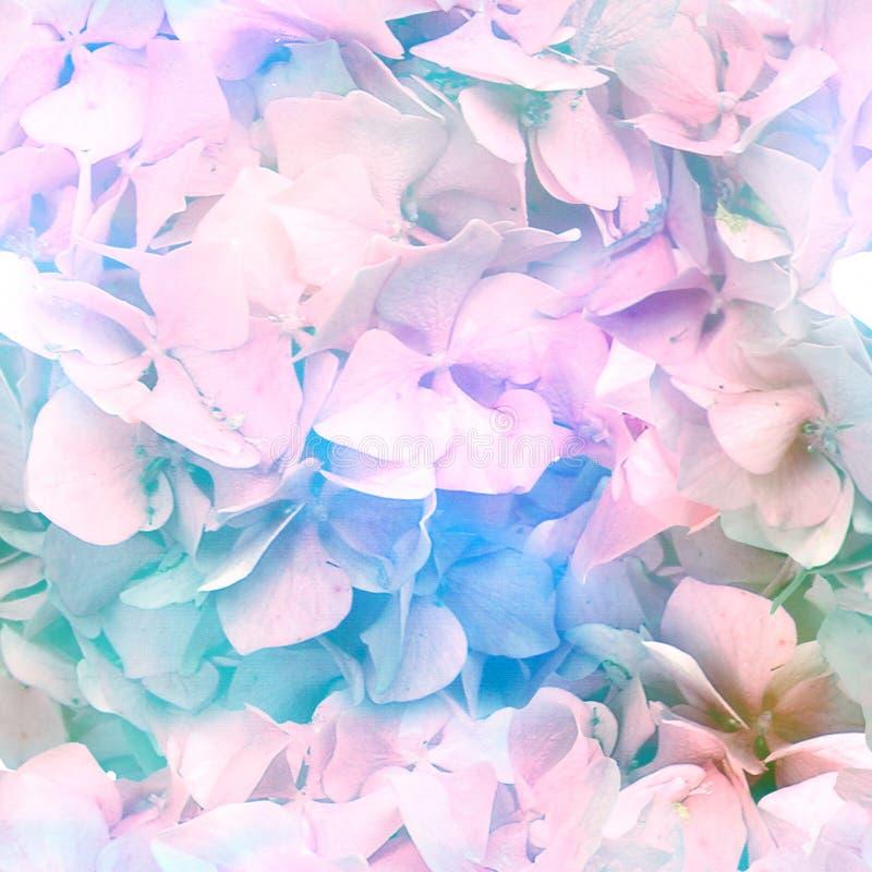 Mehrfarben ganz über Blüten-Druck lizenzfreie abbildung