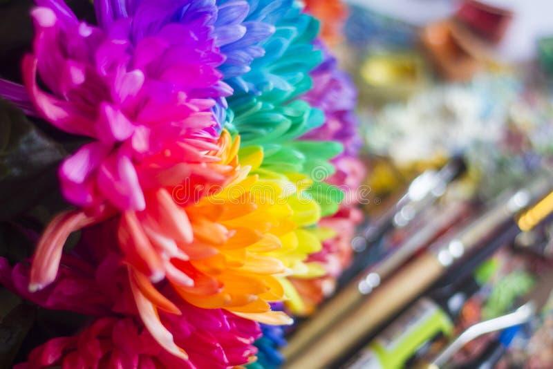 Mehrfarbige Chrysanthemen auf der Palette mit Farben und Bürsten des Künstlers lizenzfreies stockfoto