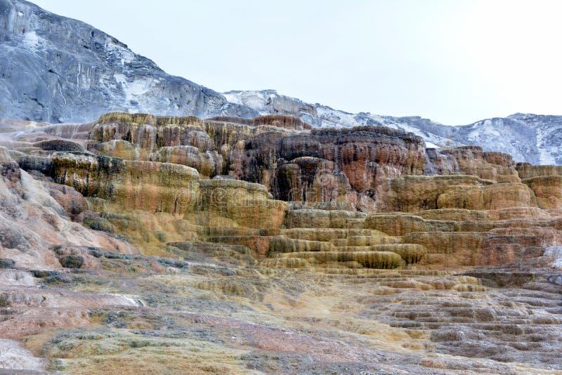 Mehrfarbige Kalksteinablagerungen in Mammoth Hot Springs in Yellowstone parken stockfoto