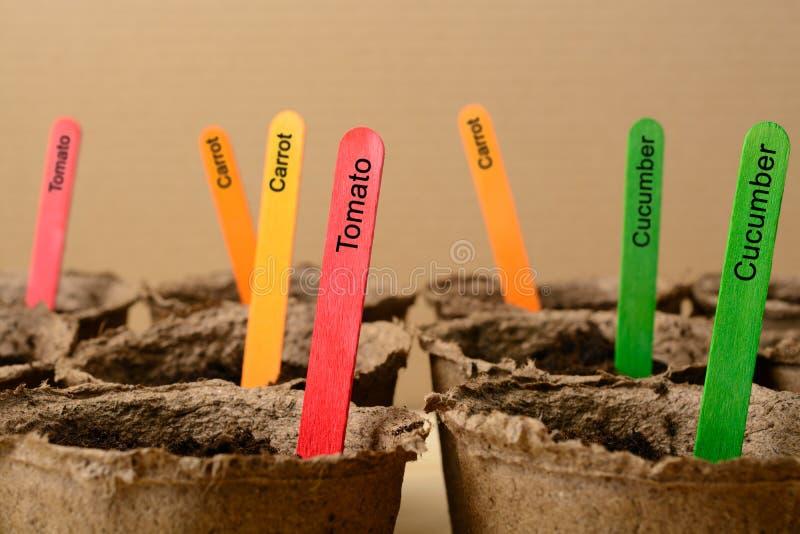Mehrfarbige Stöcke in den Torftöpfen lizenzfreie stockfotografie