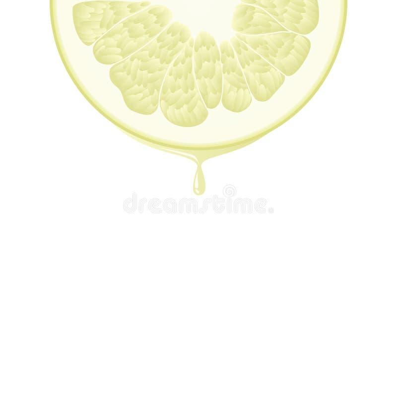Meia fatia colorida realística isolada do círculo de pomelo suculento da cor amarela com gota do suco no fundo branco ilustração stock