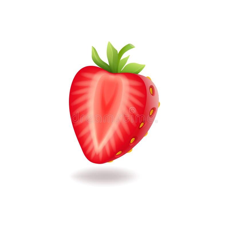 Meia morango cortada doce realística com folhas verdes, berrie vermelho fresco, isolado no vetor branco do fundo ilustração do vetor