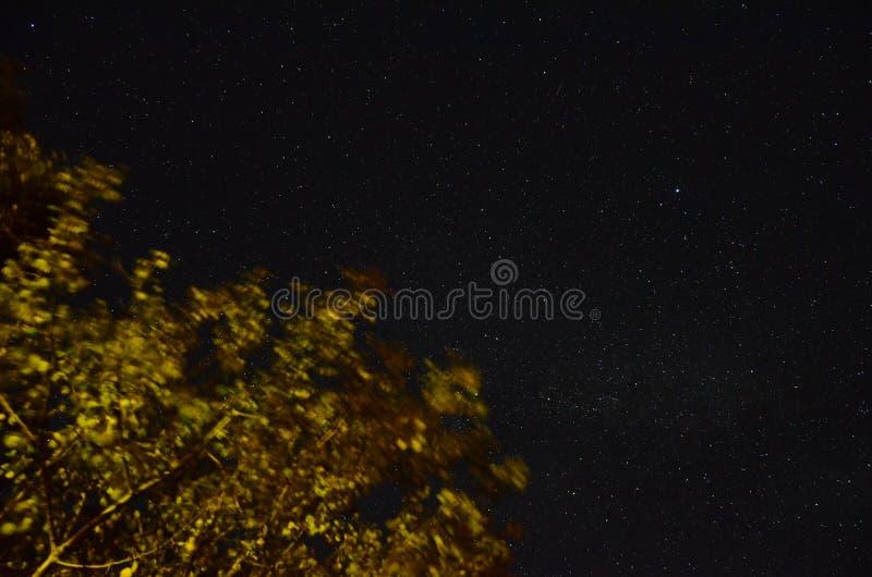meia-noite imagem de stock