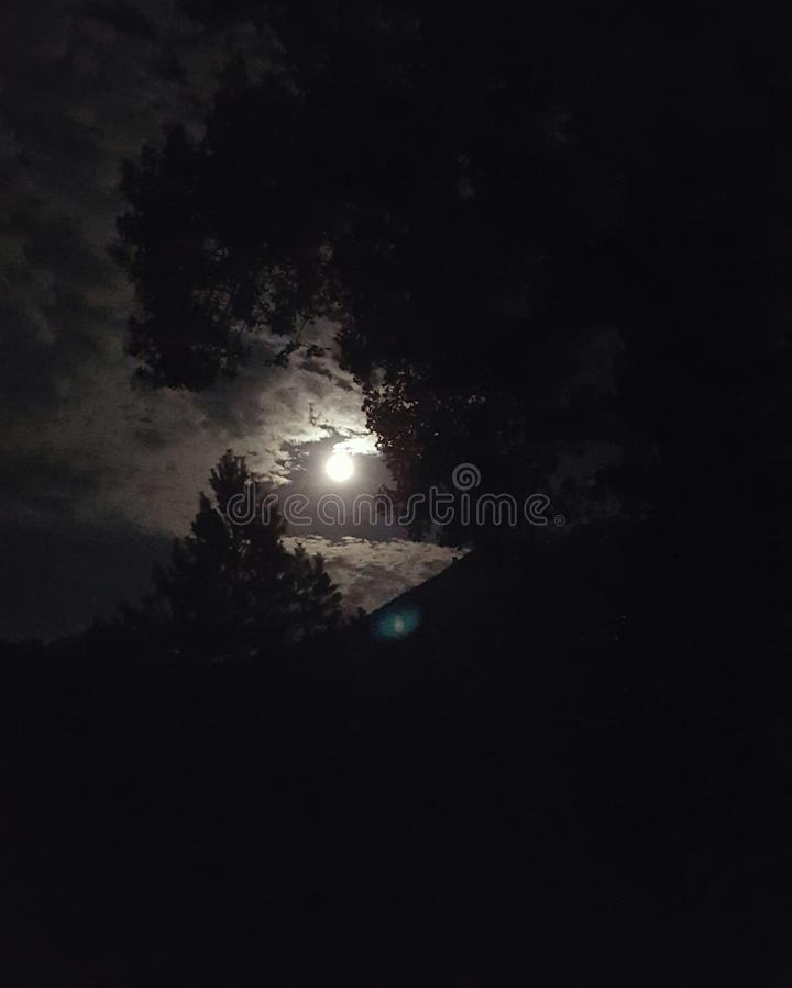 meia-noite fotografia de stock royalty free