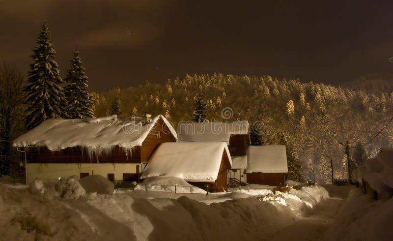 Meia-noite do inverno fotografia de stock royalty free