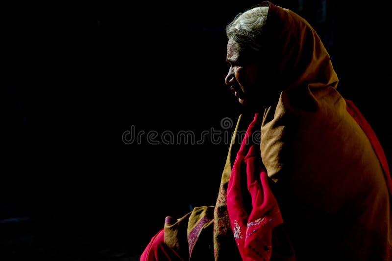 Meia silhueta da mulher de Rajasthani fotos de stock royalty free
