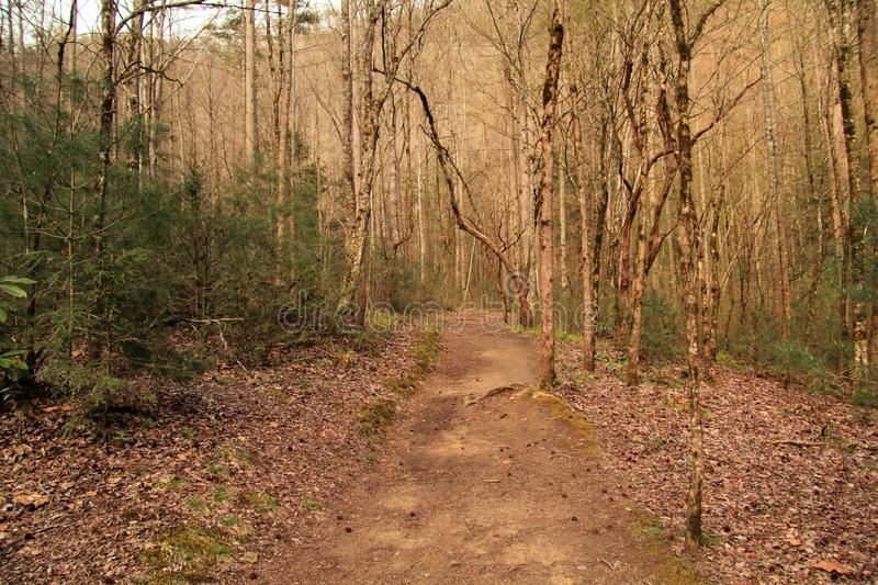 Meigs Creek Backcountry Hiking Trail stock images