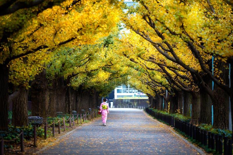 Meiji Jingu Gaien zdjęcie royalty free