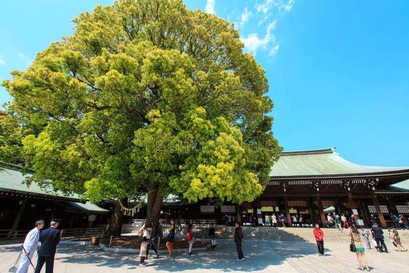 Meiji Jingu Shrine. The Meiji Jingu Shinto shrine in Tokyo, Japan. Photo taken on: April 13, 2013 royalty free stock photography