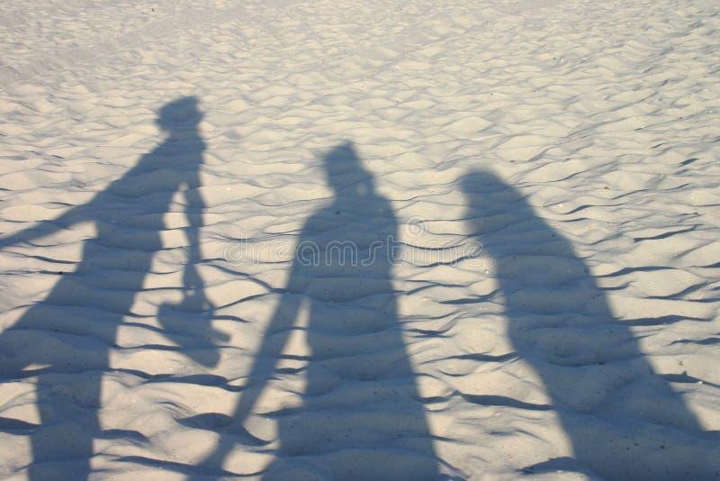 Download Meilleurs amis photo stock. Image du sable, vacances, ensemble - 725698