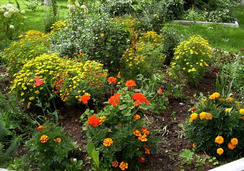 Mein Garten Meine Blumen Eine wunderbare Welt der Fantasie stockfotografie
