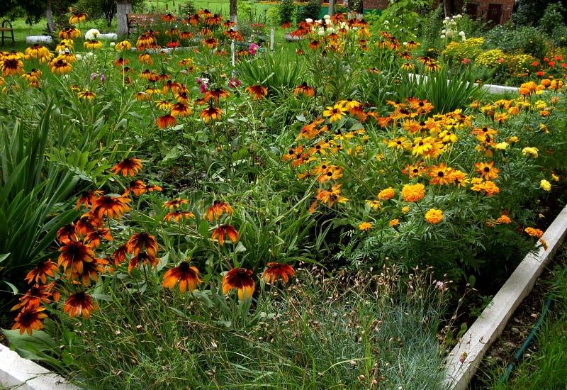 Mein Garten Meine Blumen Eine wunderbare Welt der Fantasie stockfoto