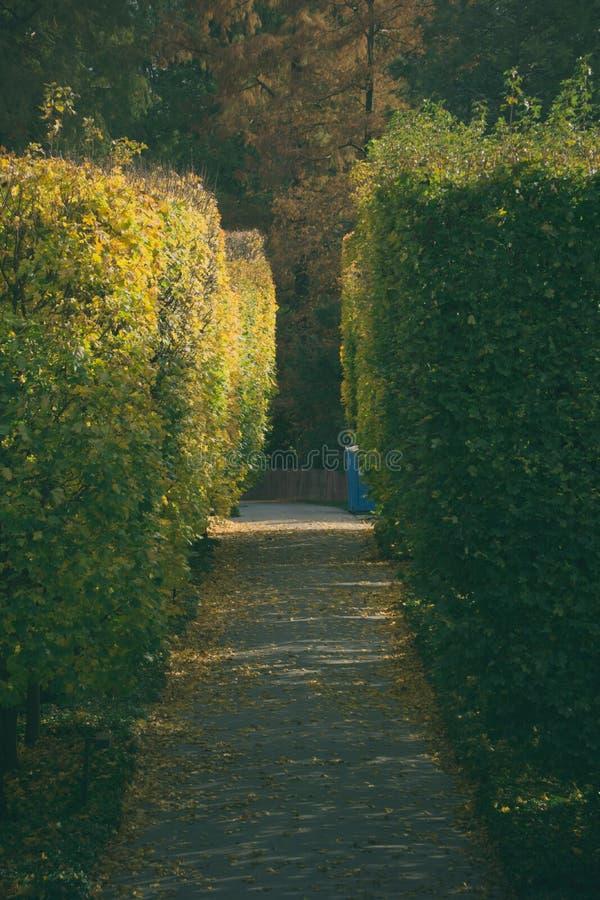 Mein Herbsttag lizenzfreie stockfotos