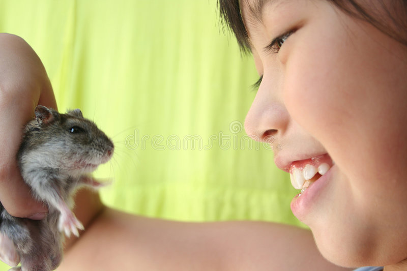 Meisje & hamster royalty-vrije stock afbeeldingen
