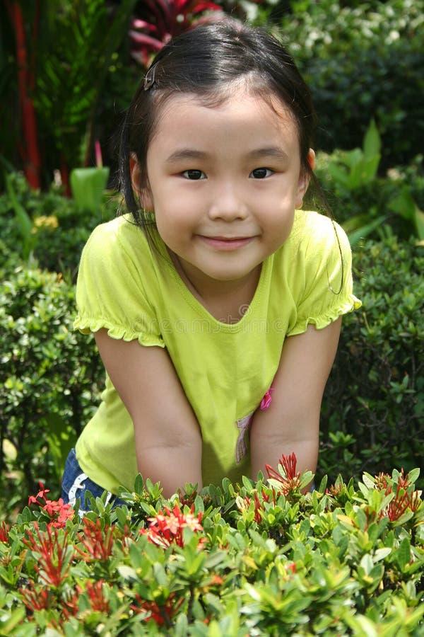 Meisje bij de tuin stock afbeeldingen