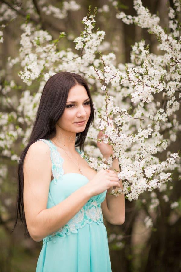 Meisje in bloemen van kers royalty-vrije stock foto