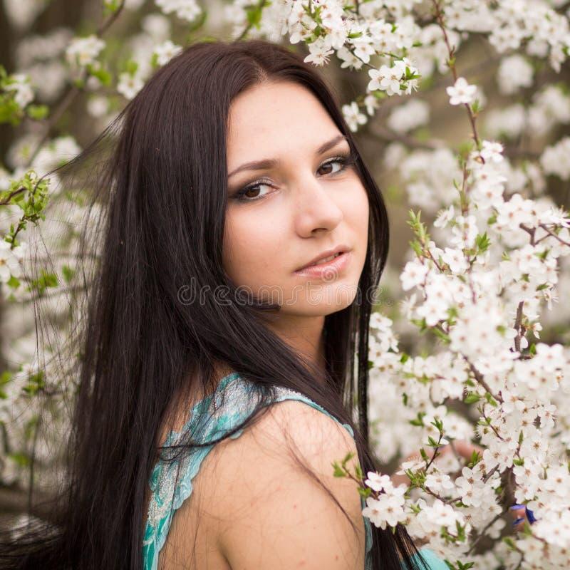 Meisje in bloemen van kers royalty-vrije stock fotografie