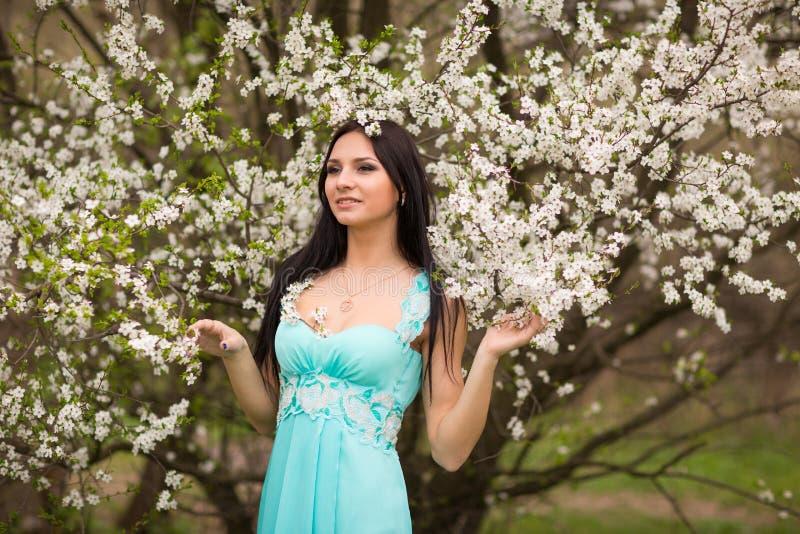 Meisje in bloemen van kers stock foto