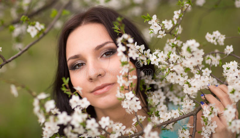 Meisje in bloemen van kers royalty-vrije stock foto's