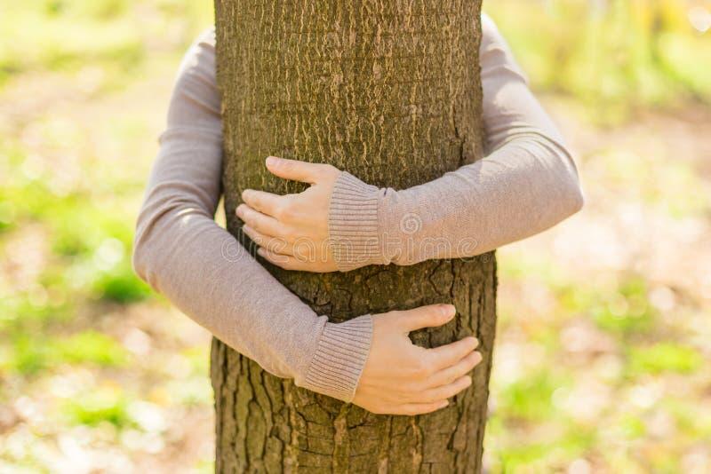 Meisje dat boom koestert royalty-vrije stock afbeelding