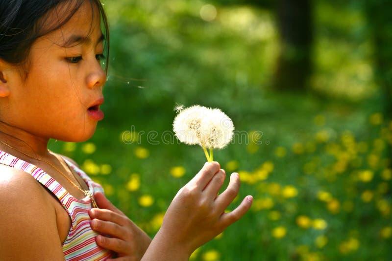 Meisje dat een paardebloem blaast stock afbeelding