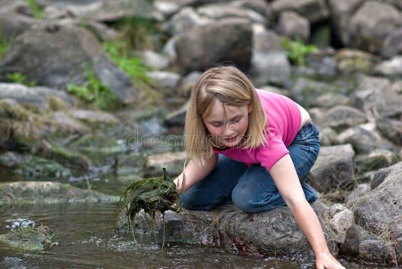Meisje dat het milieu helpt stock foto's