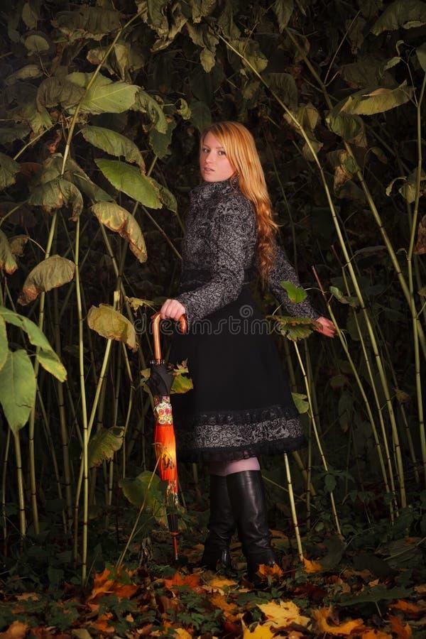 Meisje dat in verrukt bos loopt stock afbeeldingen
