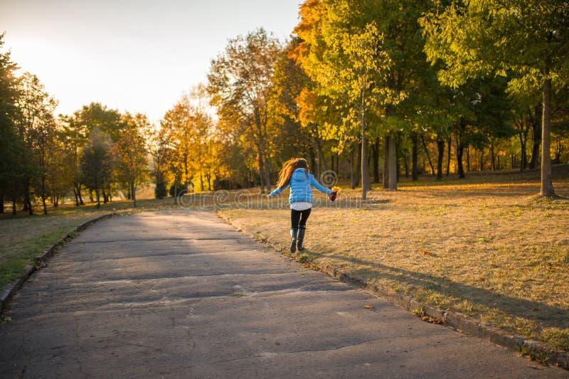 Meisje in de de herfst bos Mooie elegante vrouw die zich in een park in de herfst bevinden stock foto's