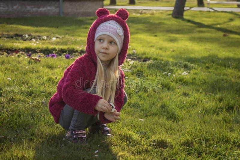 Meisje die bloemen op eerste de lentedag verzamelen royalty-vrije stock fotografie