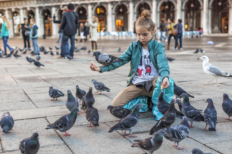 Meisje die de duiven op vierkant st-Marc voeden stock fotografie
