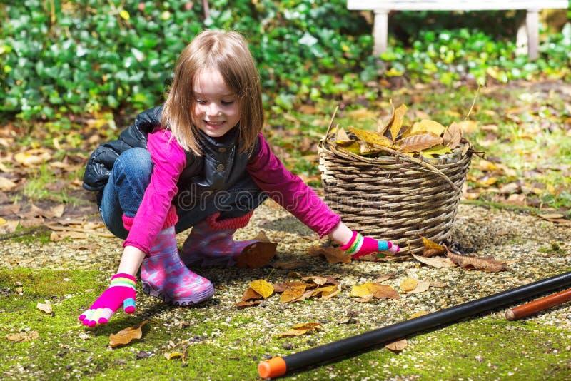 Meisje die de herfstbladeren opnemen royalty-vrije stock fotografie