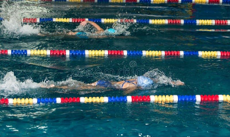 Meisje die in de pool zwemmen stock fotografie