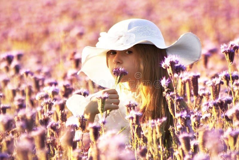 Meisje die een bloem tansy phacelia op een de zomeravond ruiken stock afbeelding