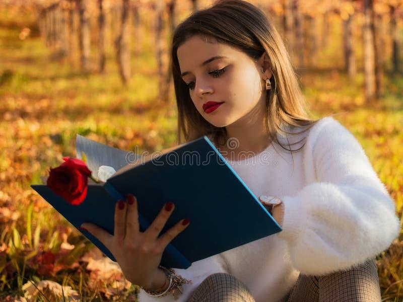 Meisje die een boekzitting in de aard lezen stock fotografie