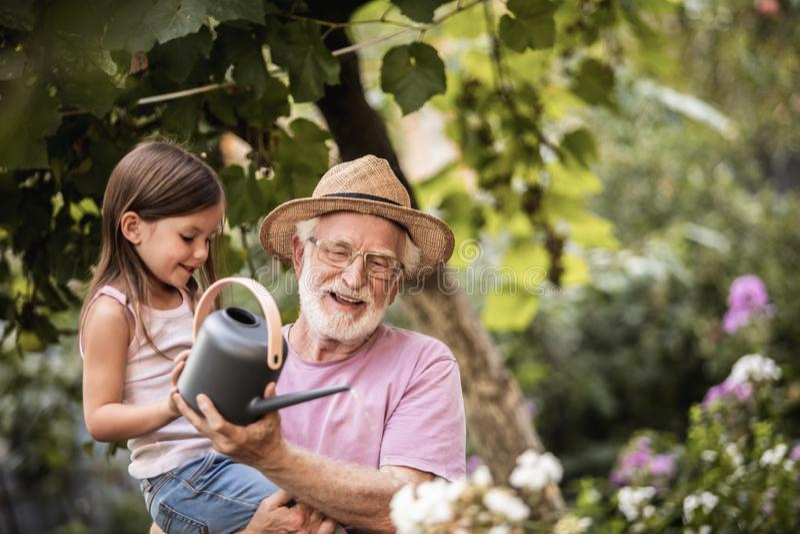 Meisje die haar opa het water geven installaties helpen royalty-vrije stock fotografie