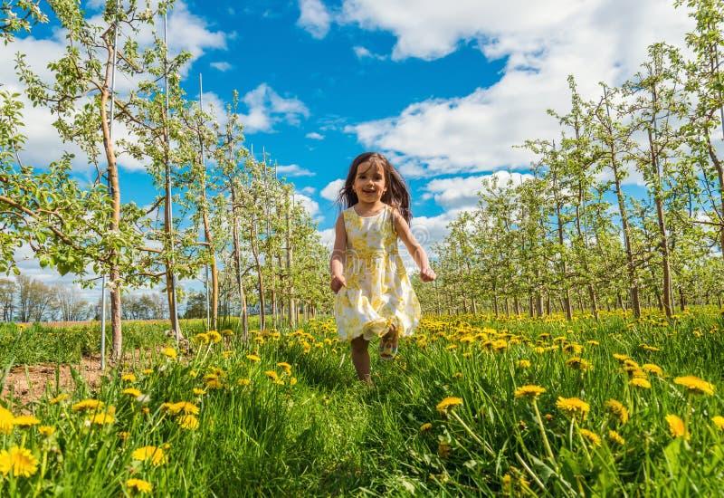 Meisje die in het midden van een appelboomgaard lopen stock afbeelding