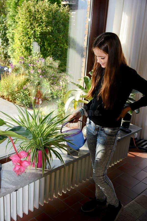 Meisje die houseplants water geven royalty-vrije stock fotografie