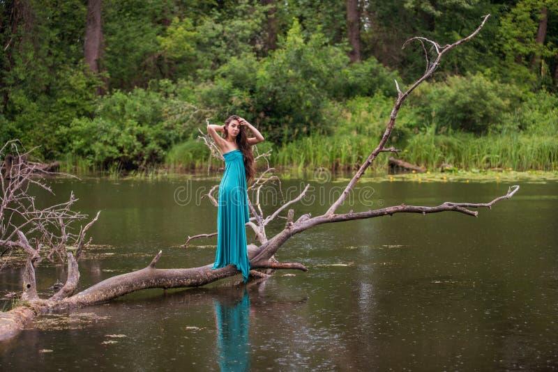 Meisje die kleding dragen die zich in rivier dichtbij bos bevinden royalty-vrije stock afbeeldingen