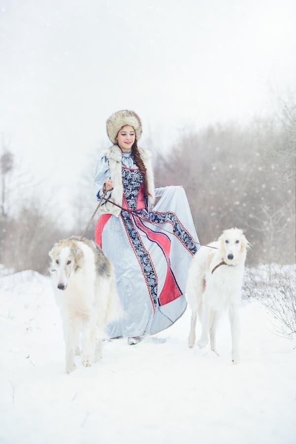 Meisje die met twee windhonden in de winter lopen stock afbeeldingen