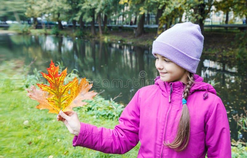 Meisje die multicolored de herfstbladeren houden stock afbeelding