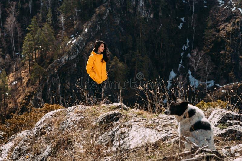 Meisje die op de berg met een hond lopen royalty-vrije stock afbeelding