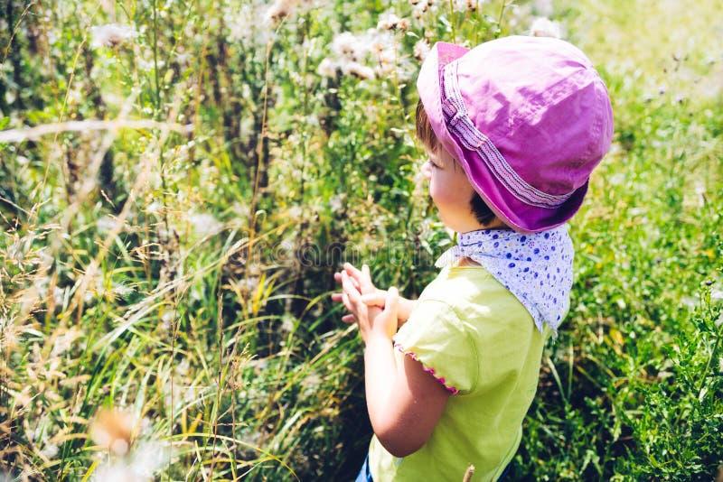 Meisje die op een de zomerweide bidden royalty-vrije stock fotografie