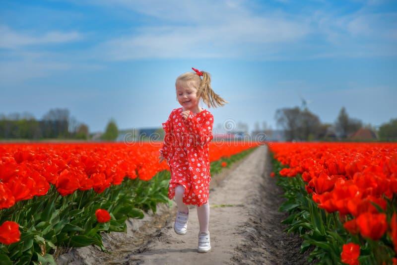 Meisje die op een rood tulpengebied lopen stock afbeeldingen
