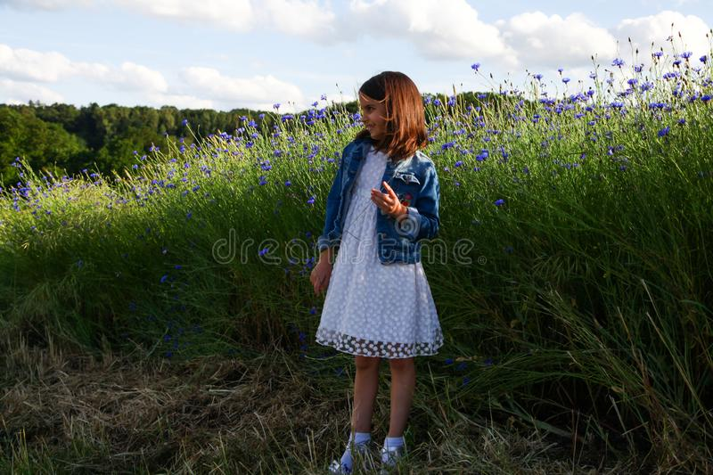 Meisje die op het gebied van mooie blauwe bloem van korenbloem lopen royalty-vrije stock afbeelding