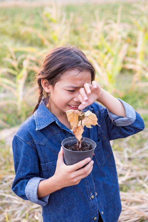 Meisje die over dode boom schreeuwen stock fotografie
